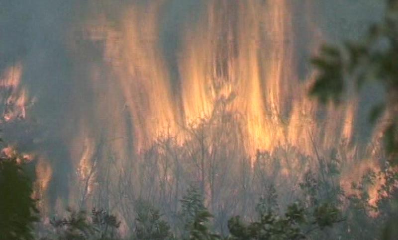 Teško kod Ljubinja: Vatra prijeti kućama, traži se pomoć helikoptera!