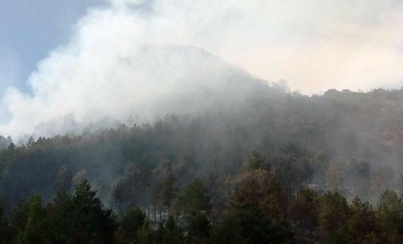 Lokalizovan požar u blizini graničnog prelaza Klobuk