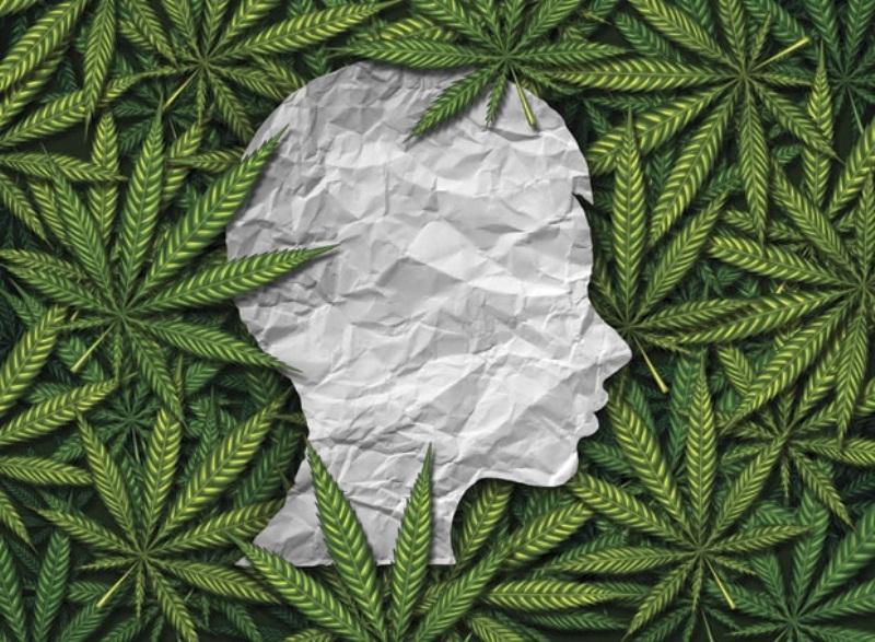 Neizlječive posljedice: Marihuana trajno mijenja mozak