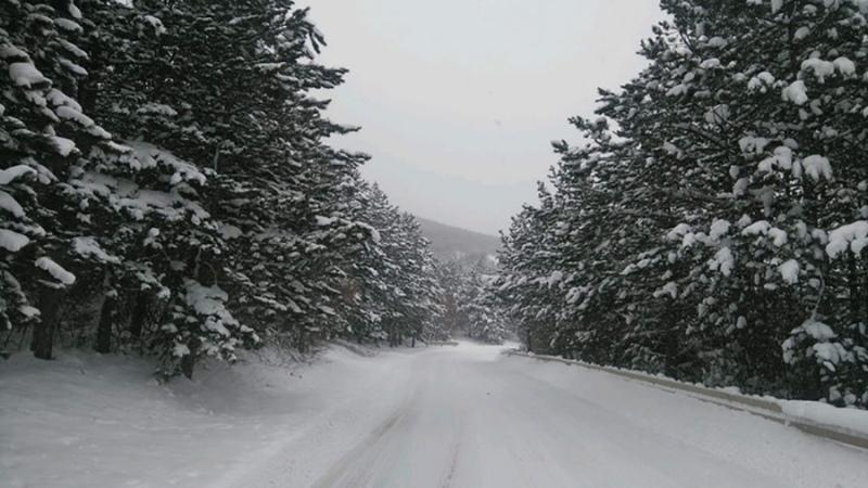 Snijeg pao jutros u Sloveniji (FOTO)