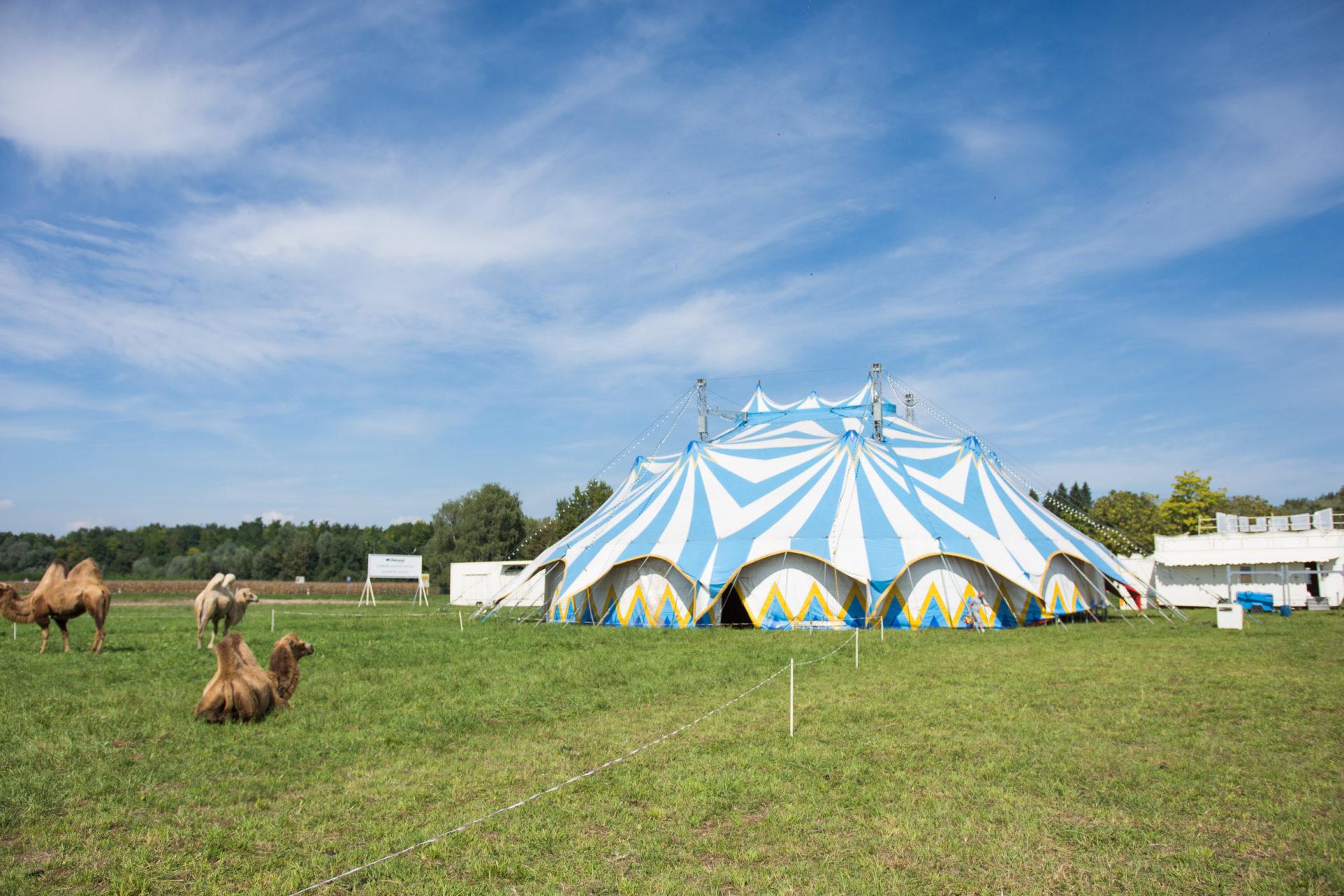 Sjećate li se kada ste zadnji put vidjeli cirkus?