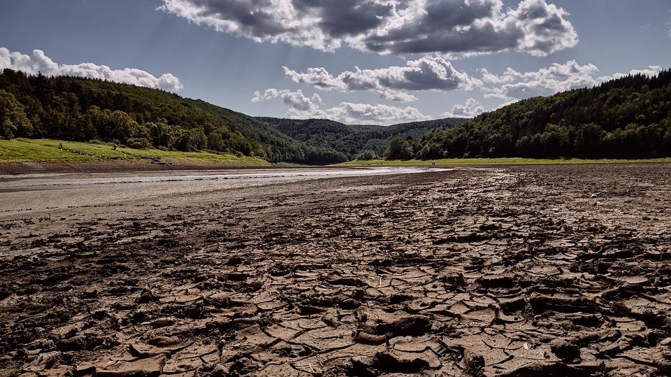 Prognoze naučnika: Predstoje nam katastrofalne vrućine