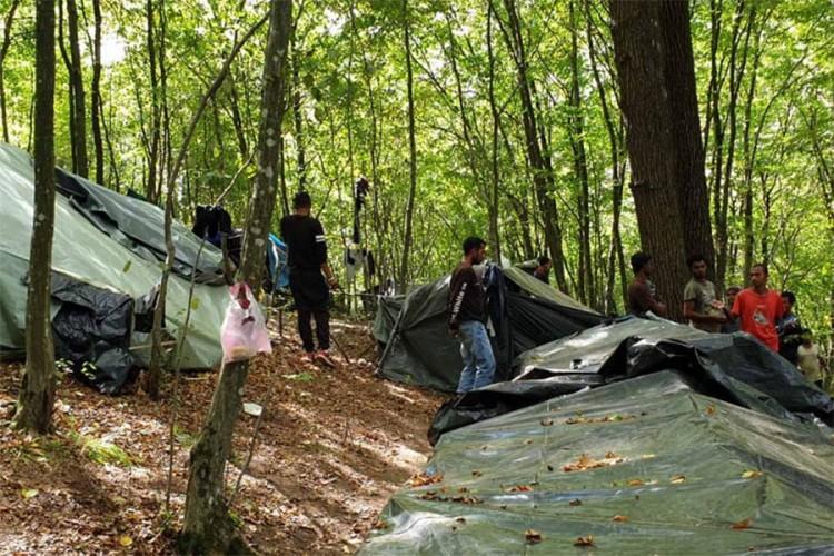 Migranti zaposjeli šume oko Velike Kladuše
