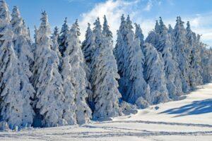 Balkanu prijete poplave: Svjetski meteorološki servis dao prognozu za zimu