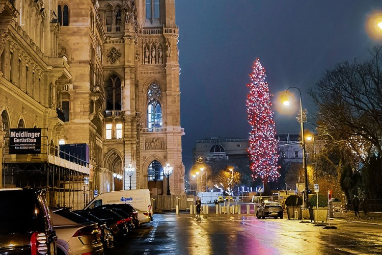Božićna jelka u Beču visoka 33 metra