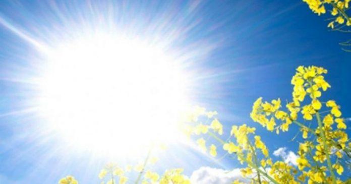 Preporuka za debeli hlad uz redovnu hidrataciju: Danas veoma toplo i sparno vrijeme